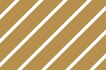 mt-masking-tape-stripe-gold-MT01D144Z-roll-1.jpg