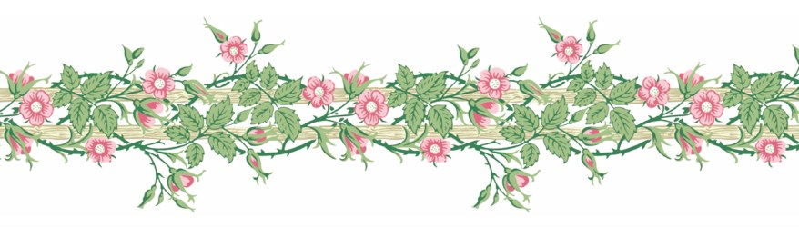 mt-washi-masking-tape-william-morris-rambler-MTWILL11-1.JPG