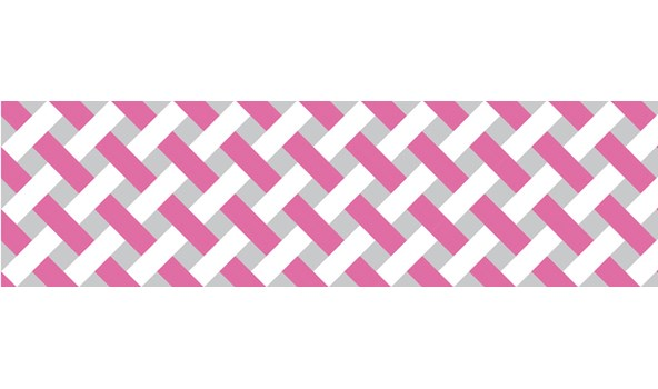 mt-washi-masking-tape-MT01D333Z_net_check_pink_roll-4.jpg