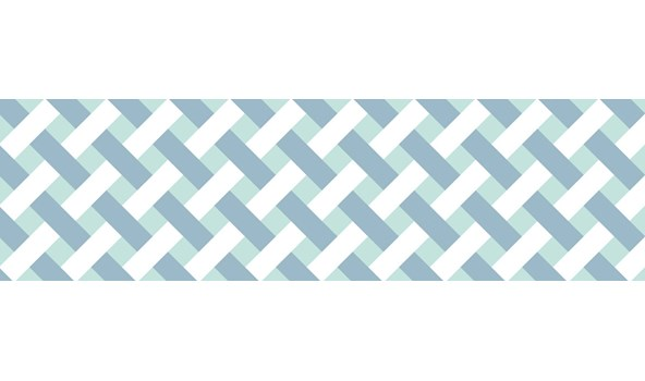 mt-washi-masking-tape-MT01D334Z_net_check_blue_roll-4.jpg